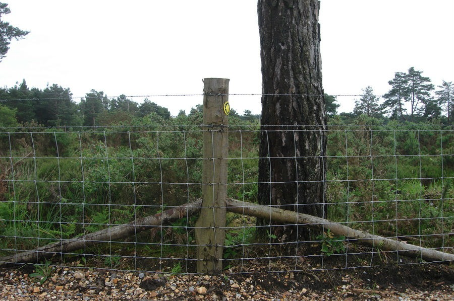 Agricultural Fencing, Simon Clark Fencing